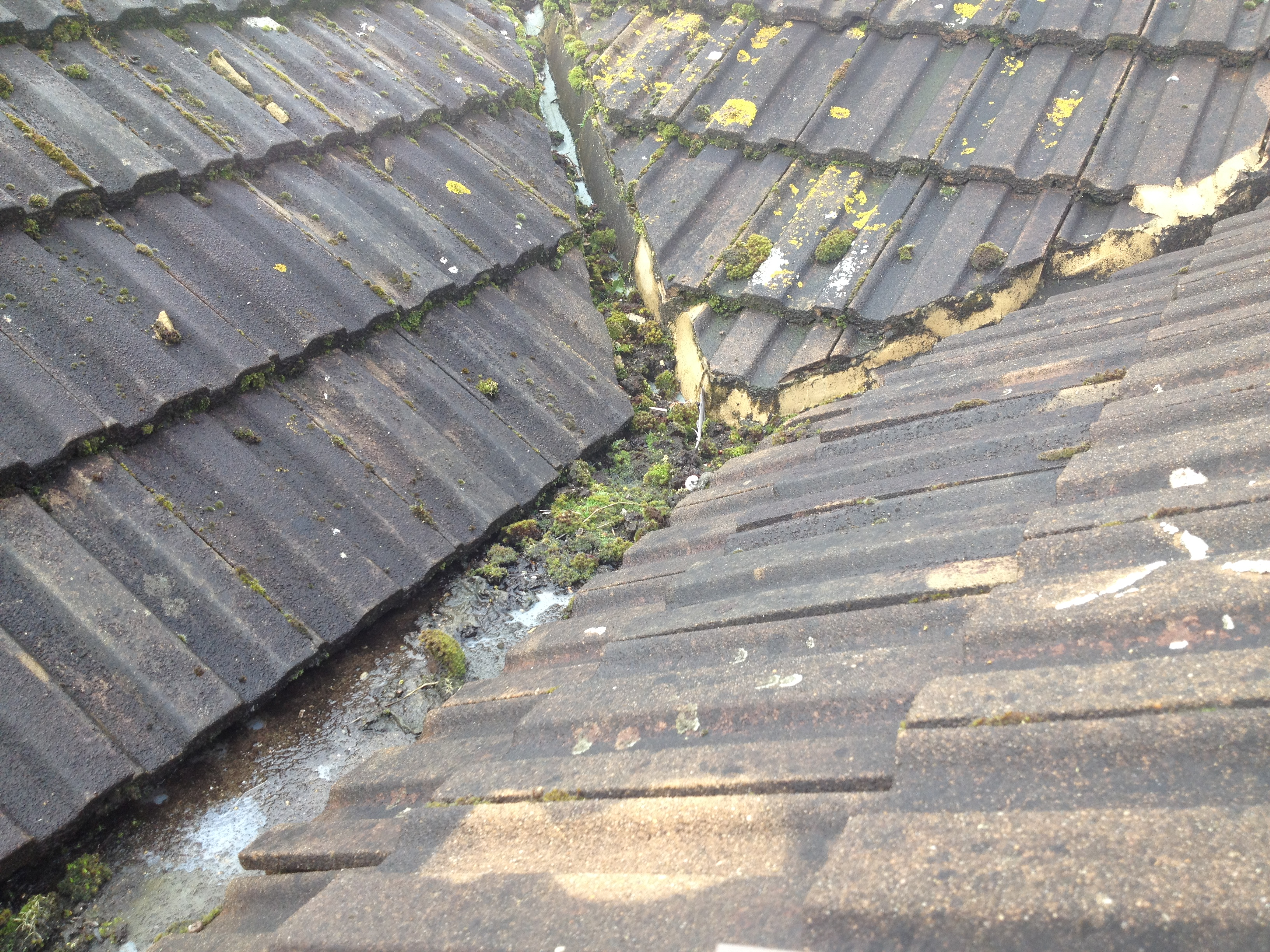 Guttering and downpipe overhaul