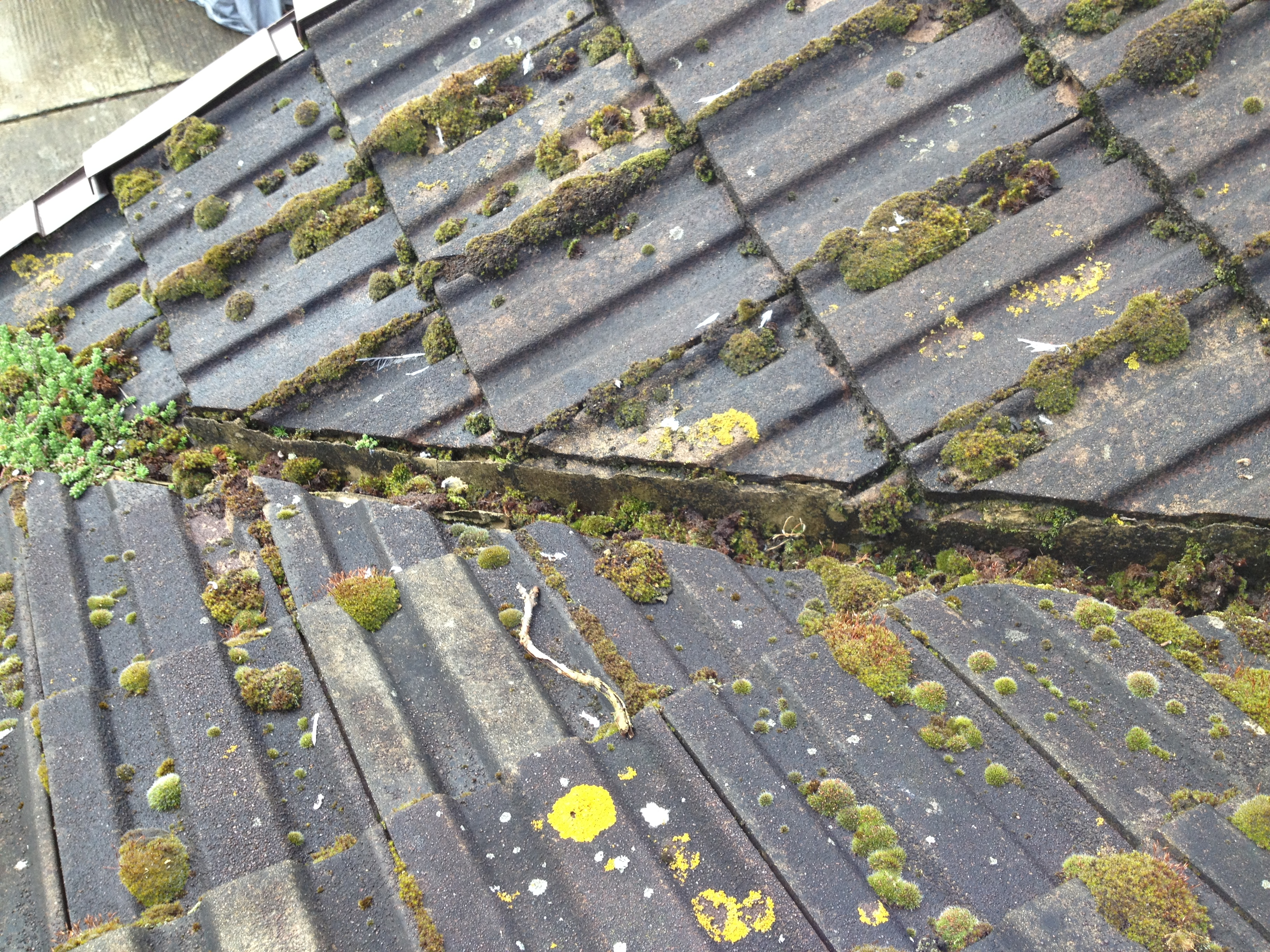 Traditional Gutter Cleaning